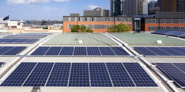 paneles solares para negocio