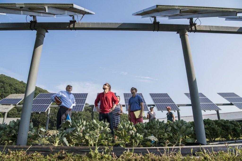 qué es el programa Energía Solar para MIPyMES